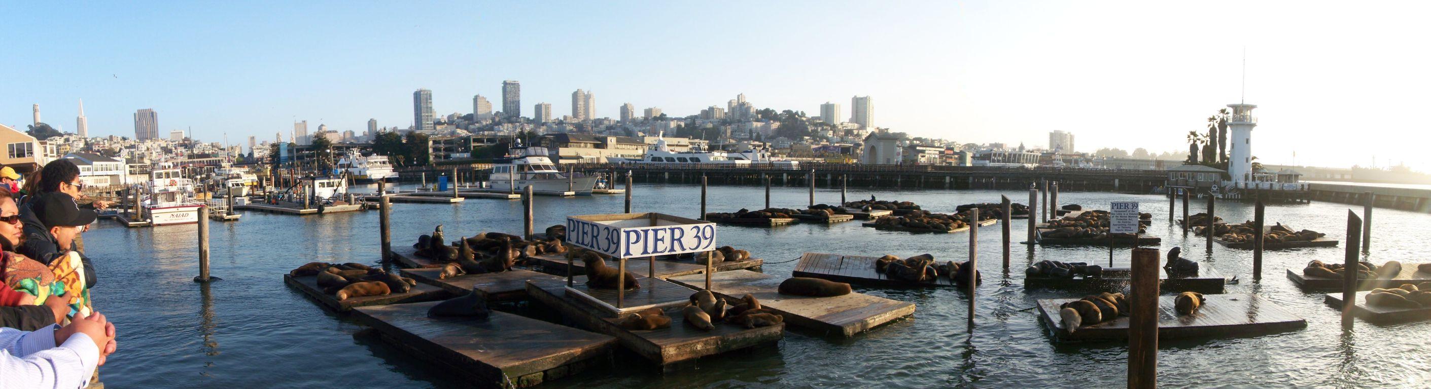 Pier-39: Panorama